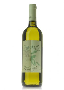 muller-thurgau-alfio-nicolodi-shelved-wine