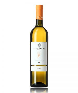 verdicchio-eos-vignamato-shelved-wine