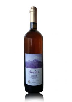 salina-ambra-d'amico-shelved-wine