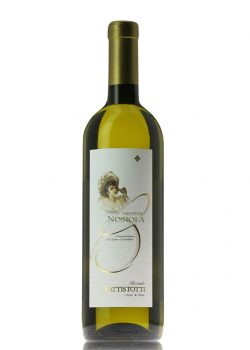 trentino-nosiola-battistotti-shelved-wine