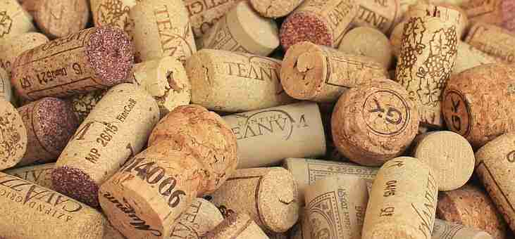 wine-history-when-the-cork-met-the-bottle-shelved-wine
