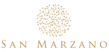 san-marzano-shelved-wine