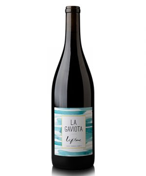 la-gaviota-lepiane-wines-shelved-wine